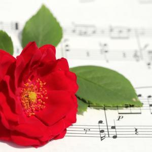 マレーシアフィルハーモニー管弦楽団(Malaysia Philharmonic Orchestra)