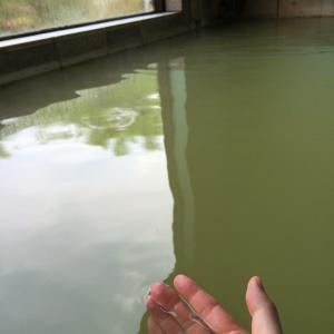 宮城県川渡温泉!千年の歴史と「かっけかわたび」の合言葉