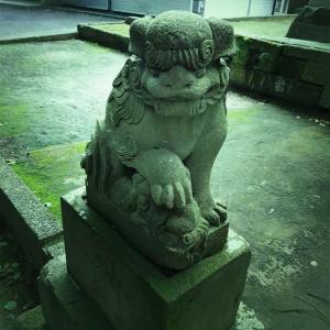 今日も神社レビューとかお寺とか