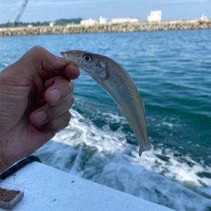 釣り船からの激闘!