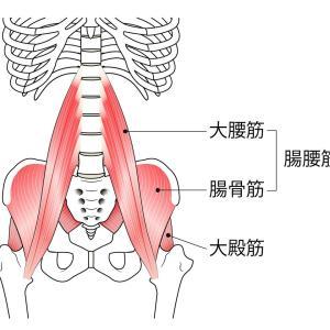腰痛のラスボス!腸腰筋のコリのセルフケア・・・のお話です。