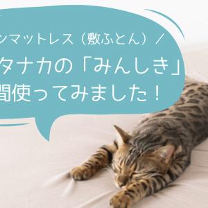【正直レビュー】ふとんタナカ「みんしき」を1年間使ってみた!