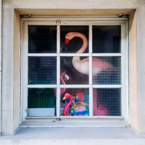 世界の窓辺から ~ ベルギー ~