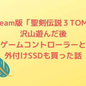 【Steam】10年ぶりのゲーム購入からのコントローラーと外付けSSDも買う【ゲーム生活再び】