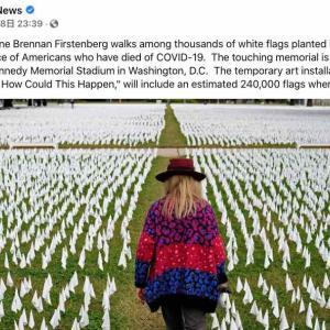 「アメリカ、どうしてこんな事が起こったの?」新型コロナで亡くなった240,000余人の方々を追悼するアート