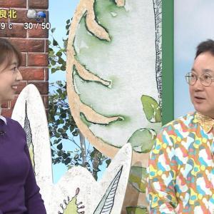 虎谷温子アナ 青森美人の横乳はもちろんセクシー!【画像】