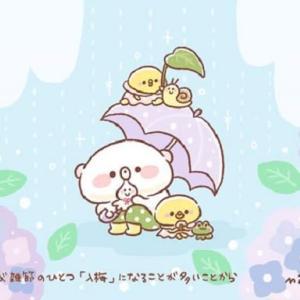 今日は「傘の日」