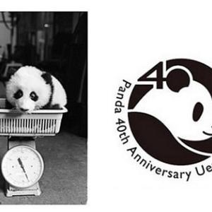 「パンダの日」