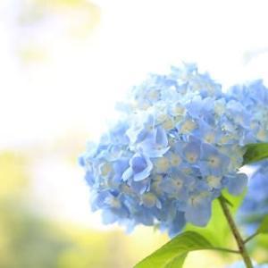 「沖縄慰霊の日」