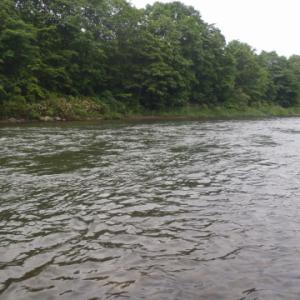 2日間の釣行は、どっちも川だ~。。