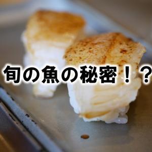 旬の魚の秘密!?