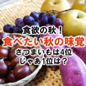 「食欲の秋」には理由があった!