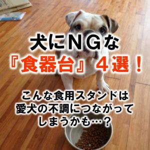 犬にNGな『食器台』4選!