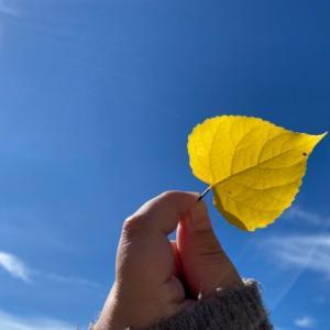 更年期症状は季節の変わり目にひどくなる?