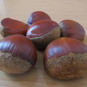 秋の味覚、栗ってどんな食べ方するの?