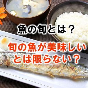 魚の旬とは?旬の魚が美味しいとは限らない!?