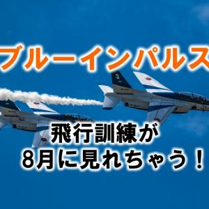 ブルーインパルスの展示飛行を見られる夏