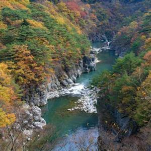 栃木県でおすすめの結婚相談所ランキング!たくさんの出会いが見つかる