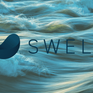 初心者におすすめWordPressテーマ「SWELL」の機能と特徴を徹底解説!