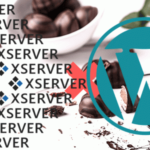 XSERVERでWordPressをインストールする方法【初心者向け】