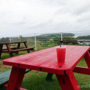 沖縄・橋の駅リカリカワルミでスイカジュース休憩をするべき3つの理由