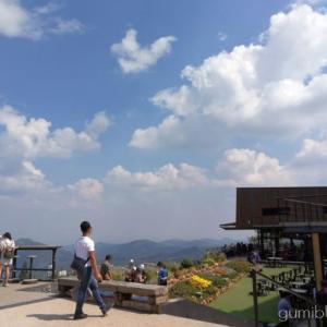 タイ・カオコーの人気絶景カフェ!ピノ・ラテカフェから雲海を眺めよう
