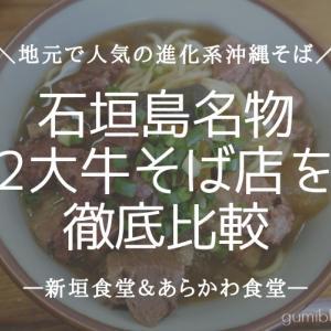 石垣島名物グルメ「2大牛そば店」を徹底比較!新垣食堂&あらかわ食堂