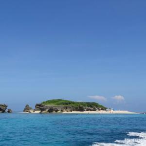 コマカ島のシュノーケルが人気の秘密を3つ公開!お魚情報つき@南城市