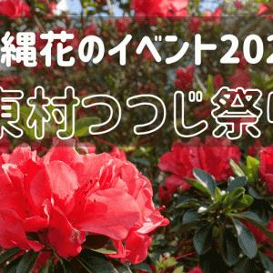 「東村つつじ祭り」沖縄2021年お花イベント@東村つつじエコパーク隣