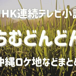 朝ドラ「ちむどんどん」沖縄方言の意味やロケ地・キャスト・内容を調査