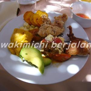 040 【ペルー紀行】伝統的なおもてなし料理クイ・フリト