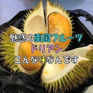 043 【マレーシア紀行】ペナンで味わう魅惑のドリアン その味を例えると?