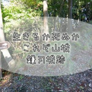 090【滋賀紀行】史上最も過酷だった山城『鎌刃城』で山城の真髄を見た