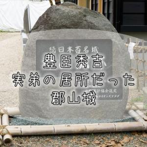 262【奈良紀行】大和の地にあり、大阪や京都へも近く、軍事や政治の要衝だった『郡山城』