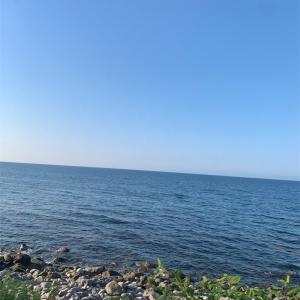 北海道に夏が来た!