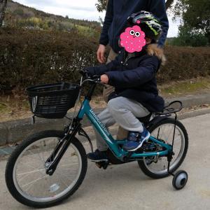 自閉症児ハチが自転車に乗れた!【この方法で2週間で補助輪が外れました!】
