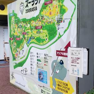 【雨の日の休日】遊びに行くなら動物園が楽しい!(ズーラシア動物園に行ってみた)