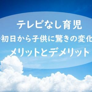 【テレビなし育児】初日から子供に驚きの変化!メリットとデメリットを報告します!