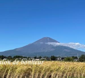 やっぱり富士山が見れると嬉しくなりますね^^