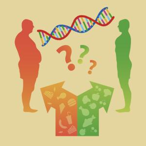 痩せとALK遺伝子 現代の癌治療薬は近い将来の抗肥満薬?
