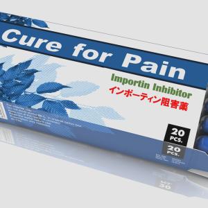 Importin(インポーティン)は慢性疼痛の新しい治療ターゲット?