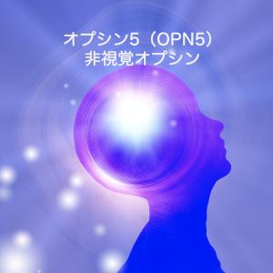 脳の深部の光受容オプシンが体温や代謝を調節する