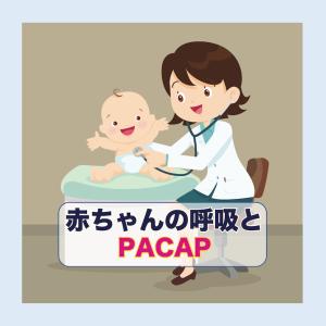 生まれたて赤ちゃんの呼吸をサポートする脳の働きとPACAP