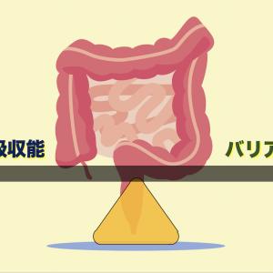 Tリンパ球が腸での栄養吸収を調節する