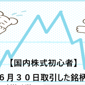 【国内株式初心者】2021年6月30日取引した銘柄の記録