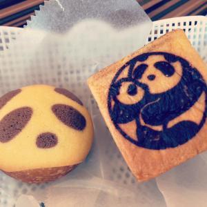 Panda pan da!! ー異世界ニッポン指南書番外編