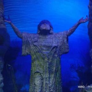 マルタの水族館🐠🐟🐡