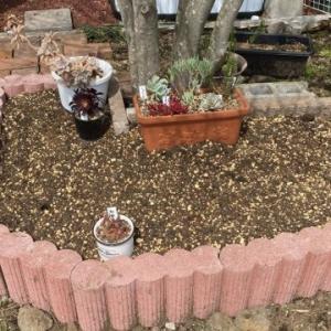 花壇作り その2