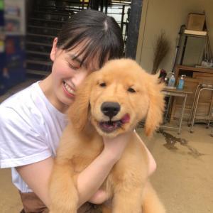 【乃木坂46】大園桃子×犬 羨ましいだろ?って顔しやがってw【おはつちゃん】
