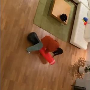 【乃木坂46】堀未央奈 次はお前だ…的な動画